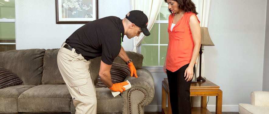Charlotte, NC carpet upholstery cleaning